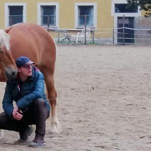 Vertrauen zum Pferd ist eine schöne Sache.