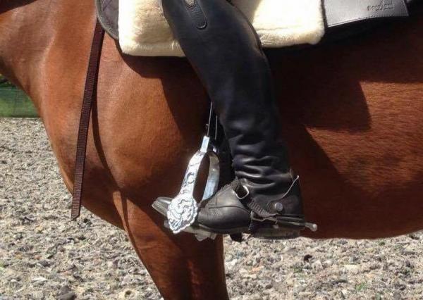 Sporen am Pferd