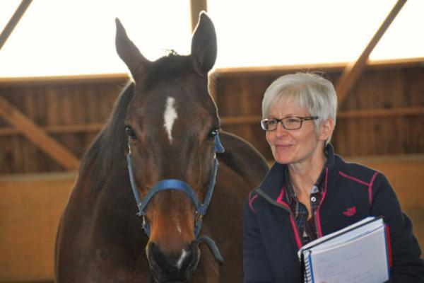 Coaching mit Pferden lernen