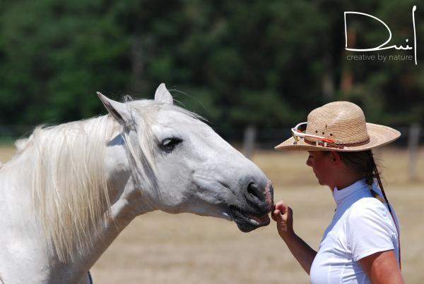 Will Dein Pferd mit Dir sein?
