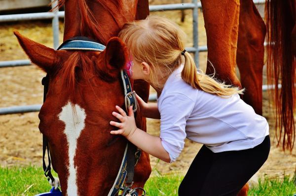 Ist das Pferd kindertauglich?