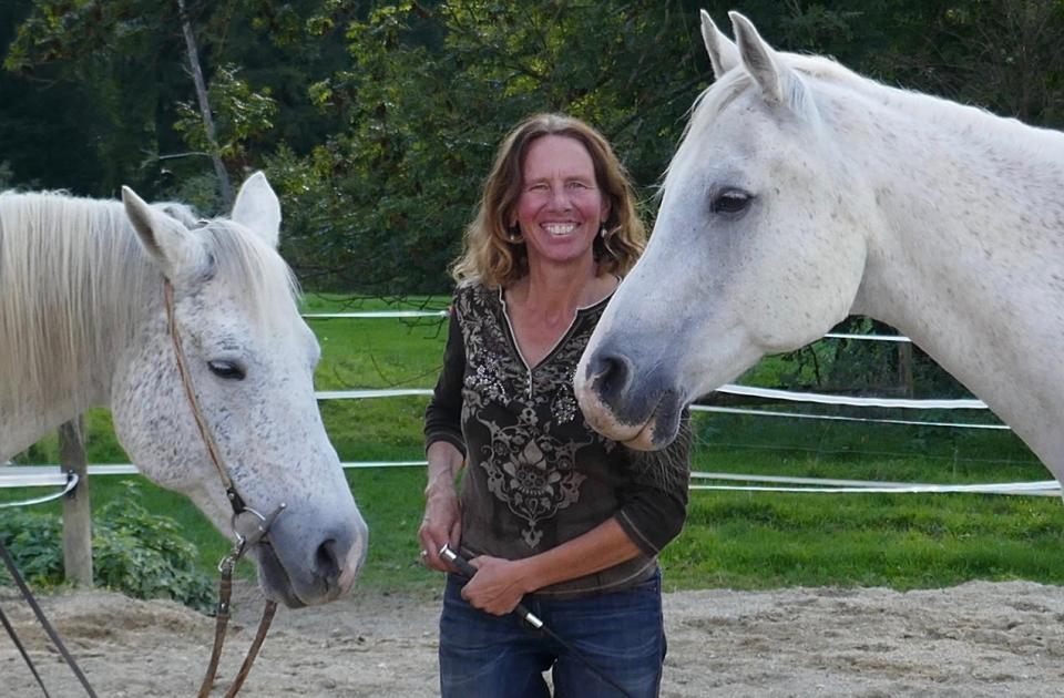 Weiterbildungskurs für Berufsleute aus dem Pferdeumfeld