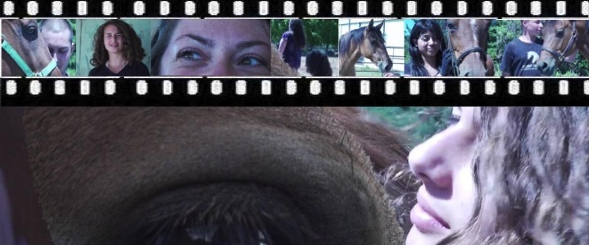 Crowdfunding für Jugend-Pferdefilm